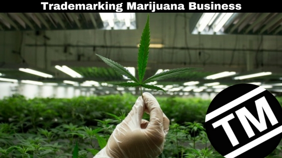 trademarking marijuana